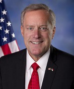 Representative MEADOWS MARK